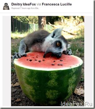 изучаем Pinterest